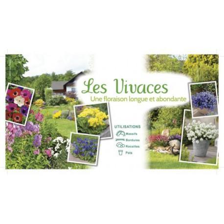 ILV - Vivaces