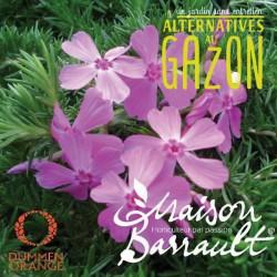 Phlox subulata drummond's pink (AG)