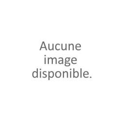 Veronica spicata blauriesii
