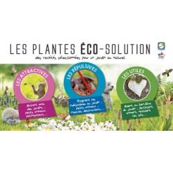 ILV - Eco Solution